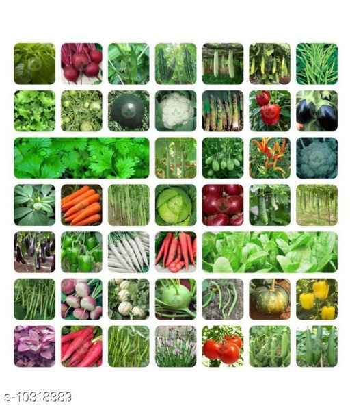 Home Gardening Combo Pack of Vegetable Seeds (45+ Variety) and Winter Flower Seeds (19+ Variety). Total 64+ Variety.