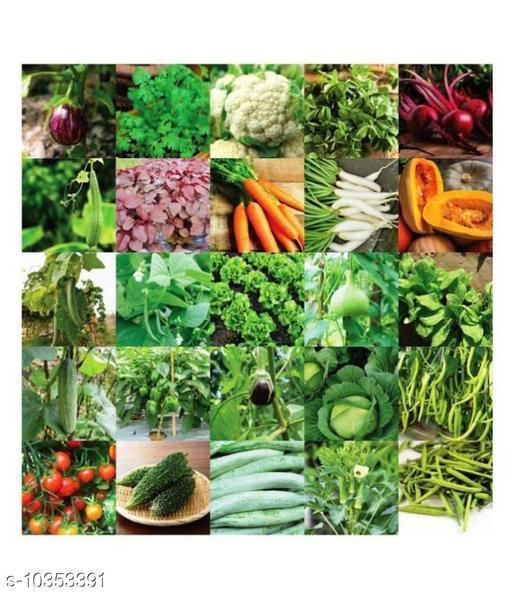 Indian Vegetable Seeds Bank For Home Garden 25 Varieties - 1400+ Seeds