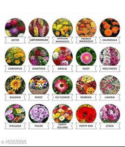 Flower Seeds Combo 700+ Seeds; 20 Varieties of Flower Seeds For Your Garden Beautiful Bloom Genuine High Germination
