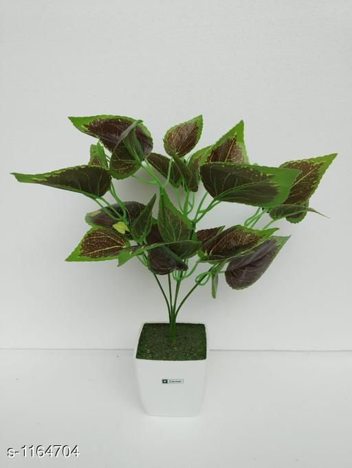 Indoor Plants Classy Flower Plant Material : Melamine & Plastic Size: Free Size Description : It Has 1 Piece Of Artificial Flower Plant Sizes Available: Free Size *Proof of Safe Delivery! Click to know on Safety Standards of Delivery Partners- https://ltl.sh/y_nZrAV3  Catalog Rating: ★3.6 (48)  Catalog Name: Classy Artificial Flower Plant Vol 1 CatalogID_145229 C133-SC1606 Code: 454-1164704-