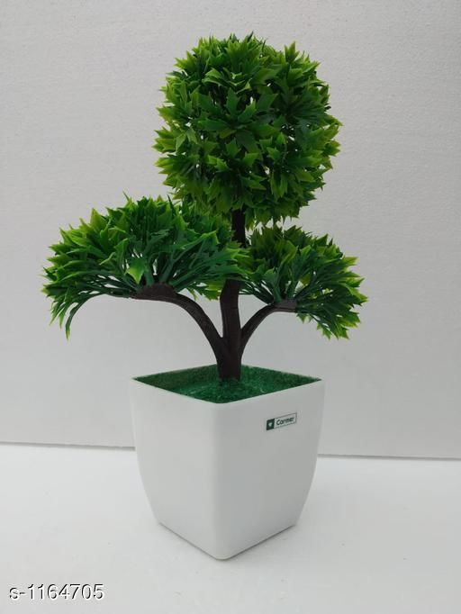 Indoor Plants Classy Flower Plant Material : Melamine & Plastic Size: Free Size Description : It Has 1 Piece Of Artificial Flower Plant Country of Origin: India Sizes Available: Free Size *Proof of Safe Delivery! Click to know on Safety Standards of Delivery Partners- https://ltl.sh/y_nZrAV3  Catalog Rating: ★3.6 (48)  Catalog Name: Classy Artificial Flower Plant Vol 1 CatalogID_145229 C133-SC1606 Code: 454-1164705-