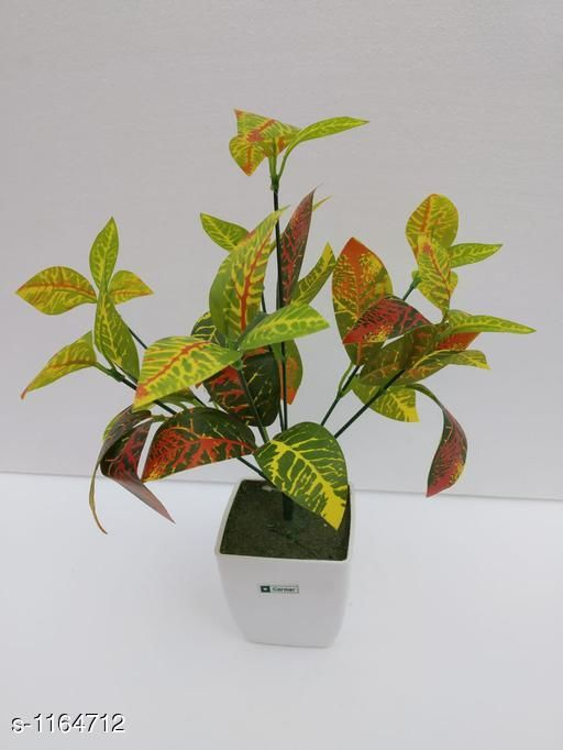 Indoor Plants Classy Flower Plant Material : Melamine & Plastic Size: Free Size Description : It Has 1 Piece Of Artificial Flower Plant Country of Origin: India Sizes Available: Free Size *Proof of Safe Delivery! Click to know on Safety Standards of Delivery Partners- https://ltl.sh/y_nZrAV3  Catalog Rating: ★3.6 (48)  Catalog Name: Classy Artificial Flower Plant Vol 1 CatalogID_145229 C133-SC1606 Code: 454-1164712-