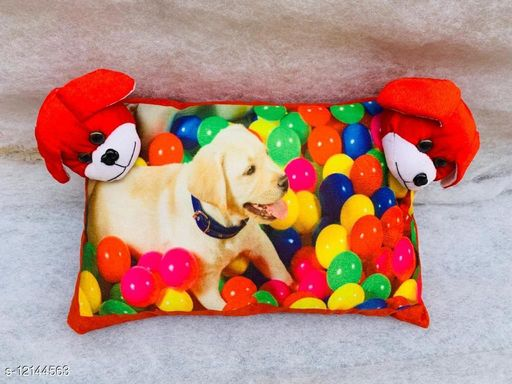 Gorgeous Fancy Pillows