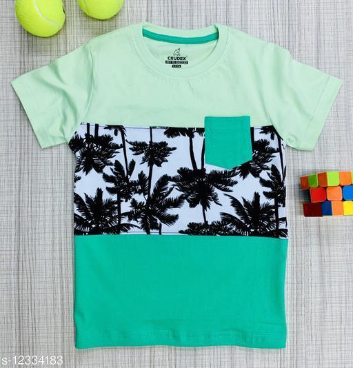 Boys fancy round neck T-Shirt