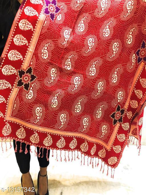 Women Paisley designer border, Kashmiri Wool blend shawl