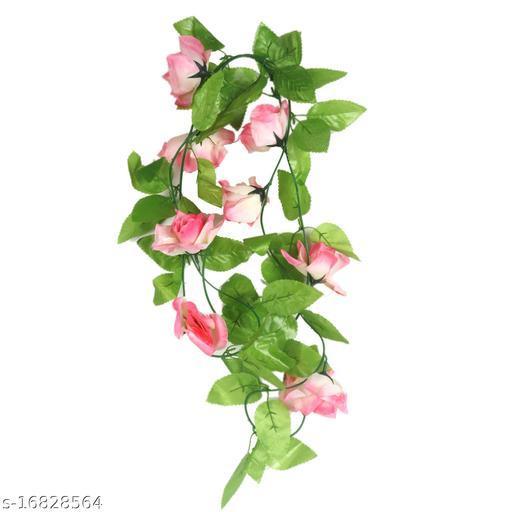 Attractive Plants