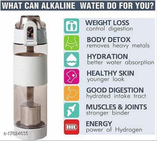 650 ML Anti-Oxidant Alkaline Water Bottle(Grey)