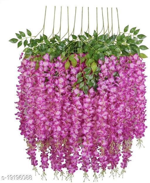 Unique Plants