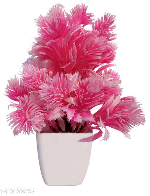 Designer Plants with Pots