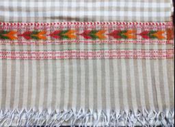Kullu lohi checked design (almond) colour