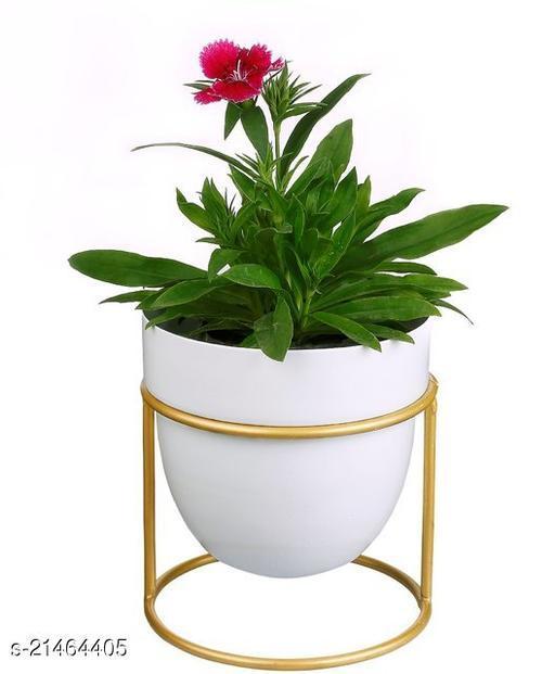 Pottery Studio Kites Decor White Metal Gardening Pots / Planters