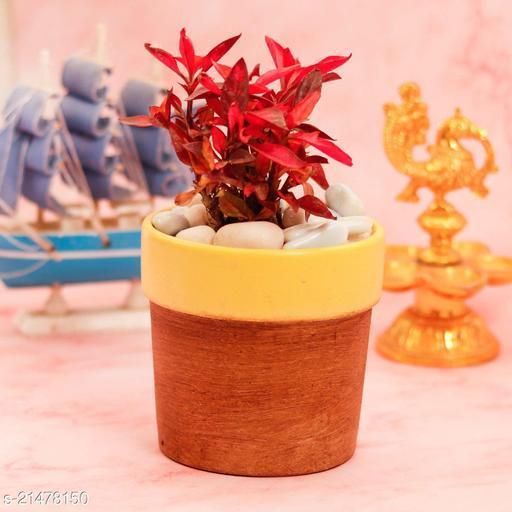 Lasaki Lyla Antique Yellow Ceramic Pot for Indoor Plants