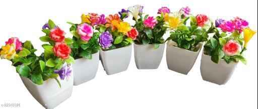 Essential Plants