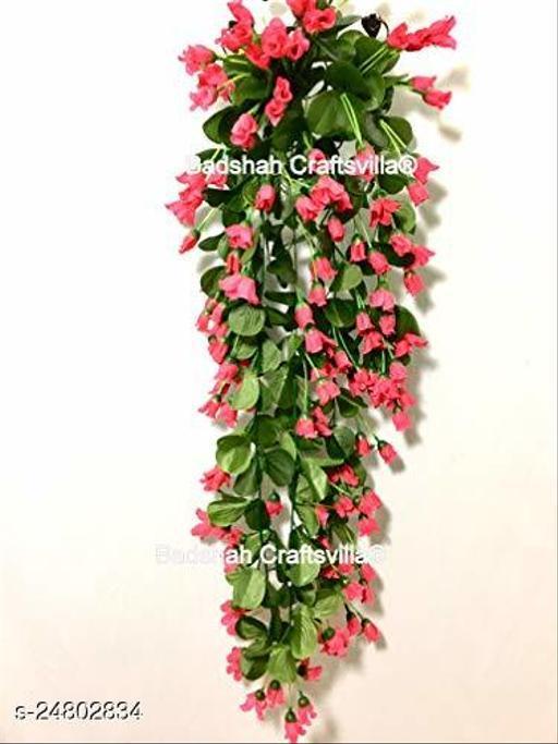 Designer Plants