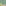 DSticker Wallpaper Style GardenFlower Size Large(40cm x 300cm)