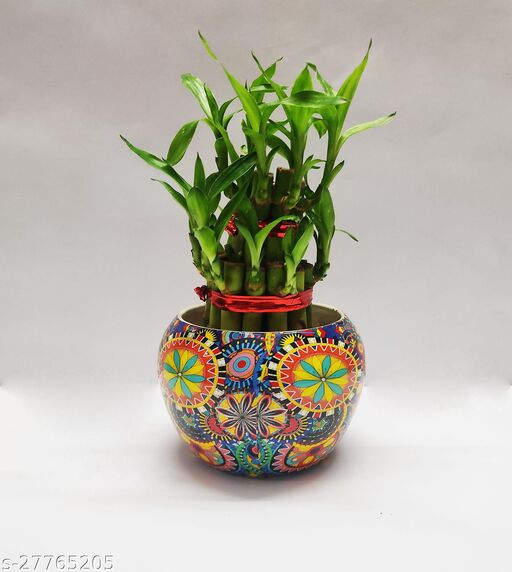 Two Layer Bamboo with Designed Metal Pot