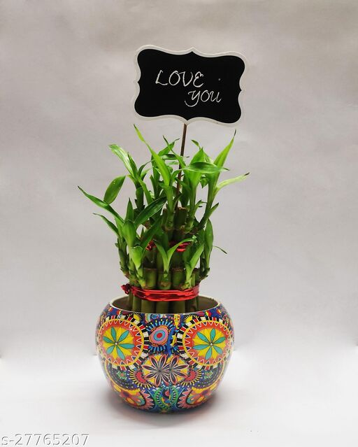 Two Layer Bamboo with Designed Metal Pot and love you tag