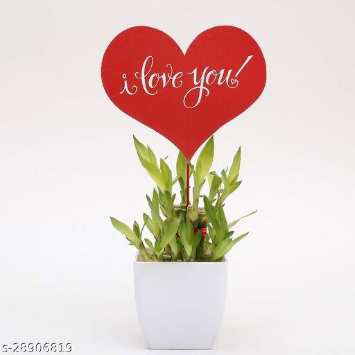Two Layer Bamboo with Heart tag