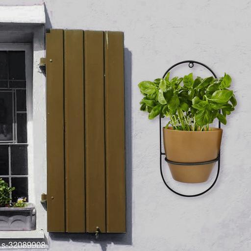Fancy Pots & Planters