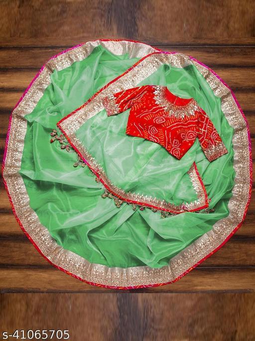 heavy organza embroidery sari