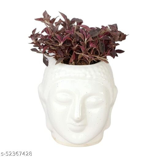 Attractive Artificial Plant, Flower and Shrubs