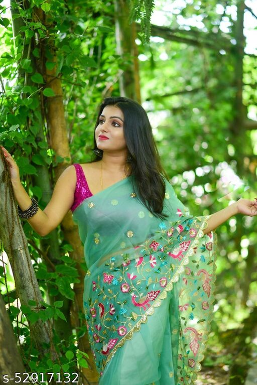 Heavy Embrodaired saree