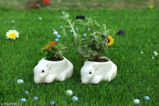 Ceramic planter pot , 2 rat Shape (Without Plant)