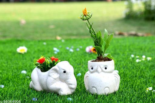 Ceramic planter pot , Combo Pack (Ullu & Hathi) (Without Plant)