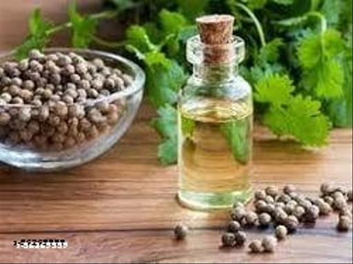 Coriander-Essential-Oil
