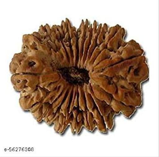 19 Mukhi Rudraksha Beads Original Natural  Rudraksha Astrological Purpose Beads Wood.