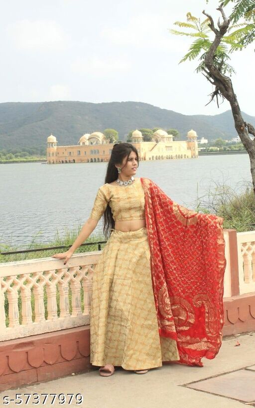 Lehenga choli for women/skirt for women/brocade skirt for women/lehenga set for women/long skirt with choli/skirt with top