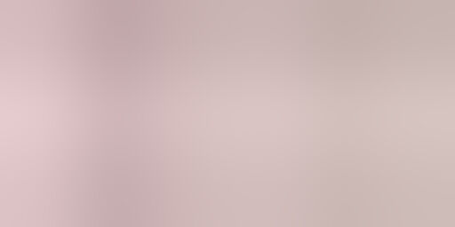 Ankit International Designer Non Woven Pink Patti Saree Cover Box Set 6