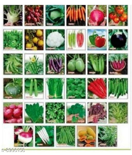 Healthy Vegetables And Flowers Seeds Vol 1