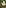 SHINY GOTA SATIN DIGITAL PRINT LAHENGA